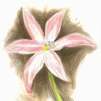 Flor al pastel