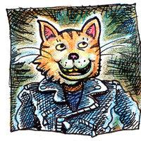 avatar gato
