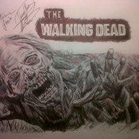 walking dead, primer zombie