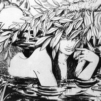Sirena varada