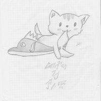gato pez