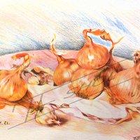 Las cebollas de renoir