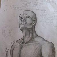 bocetos y estudios de anatomia