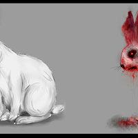 Conejo vivo muerto ( comparación)