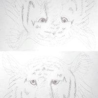 Experimento tigre, dibujar con el hemisferio derecho del cerebro.
