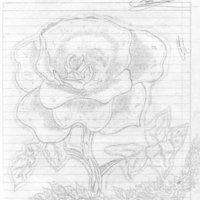 Rosa para una niña