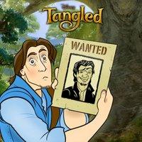 Flynn Enredados - Wanted !