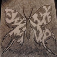mariposa :3