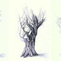 Bocetos proyecto naturaleza y rostro
