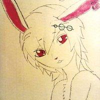 Conejo Furry
