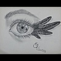 A través de los ojos del cuervo