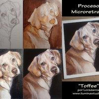 Retratos pequeños de Mascotas 12x15 cm
