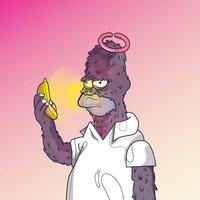 Homer Monkey