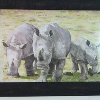 Familia Rhino skin