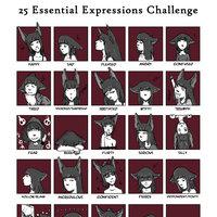 25 expresiones esenciales Hache