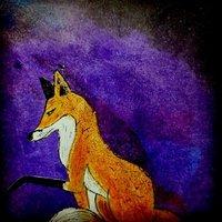 un zorro en el universo