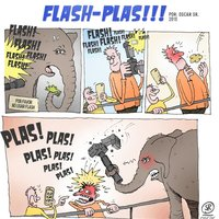 Flash Plas!