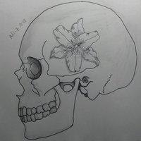 Cráneo y flor