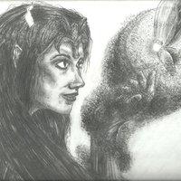 Zelda & Navi