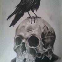 Skull&crow