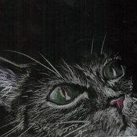 Dibujo rapido: Gato