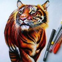 Un triste tigre...