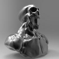 ZSkull