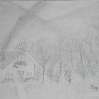 Casa entre el bosque