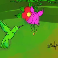 Paisaje colibri..