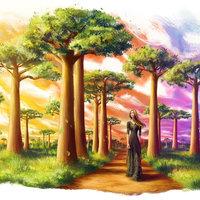 Paseo de los Baobabs