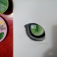 Mirada felina - Acrílico