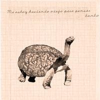 Turtlebrain