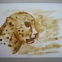 Pintado con cafe - Chita - Boceto