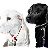 Retrato perros