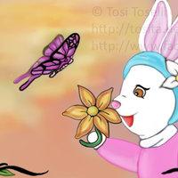 El tiempo de las mariposas