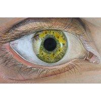 Otro ojo