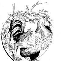 Gallo (Diseño de tatuaje)