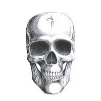 Ilustraciones para la escuela Da Vinci