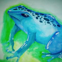 Blue Frog-Rana Azúl