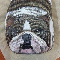 bulldog ingles sobre piedra