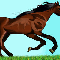 caballo en photoshop