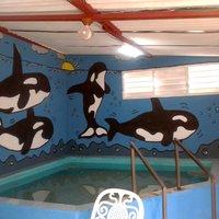 mural orcas