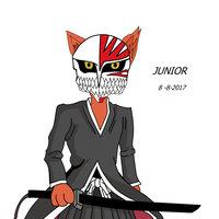 CAT ICHIGO