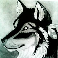 el único lobo que he dibujado