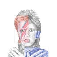Parcelas 001(Bowie)