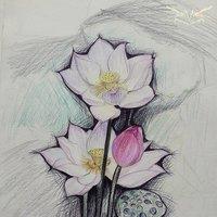 Flores(Practica de color)