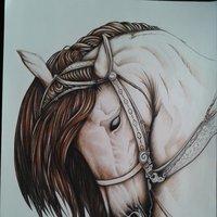 •Horse•
