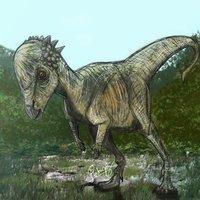 Pachycephalosaurus RPZ