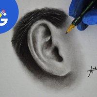 Como dibujar una oreja realista.
