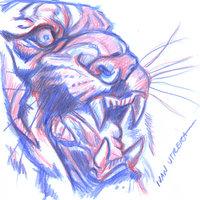 tigre en lapices de colores